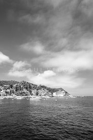 Catalina Island Black and White Photo