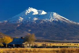 Barn and Mt. Shasta #1