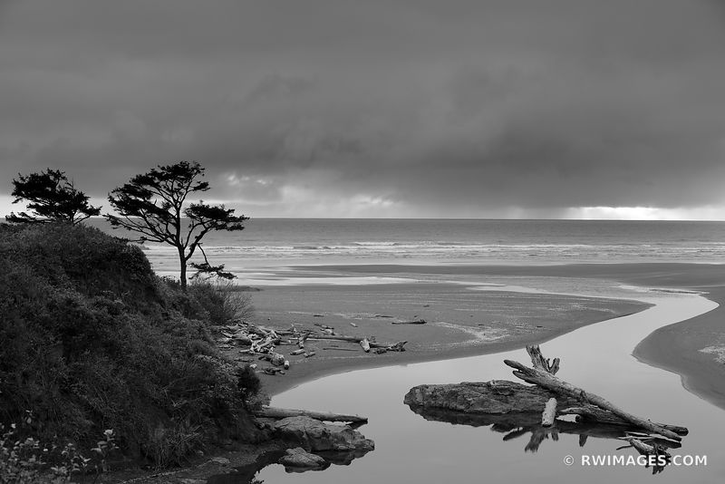 KALALOCH BEACH OLYMPIC NATIONAL PARK WASHINGTON PACIFIC NORTHWEST COAST BLACK AND WHITE