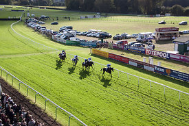 Fontwell Race Day