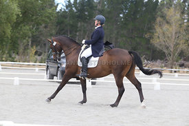 SI_Festival_of_Dressage_310115_Level_8_MFS_1107