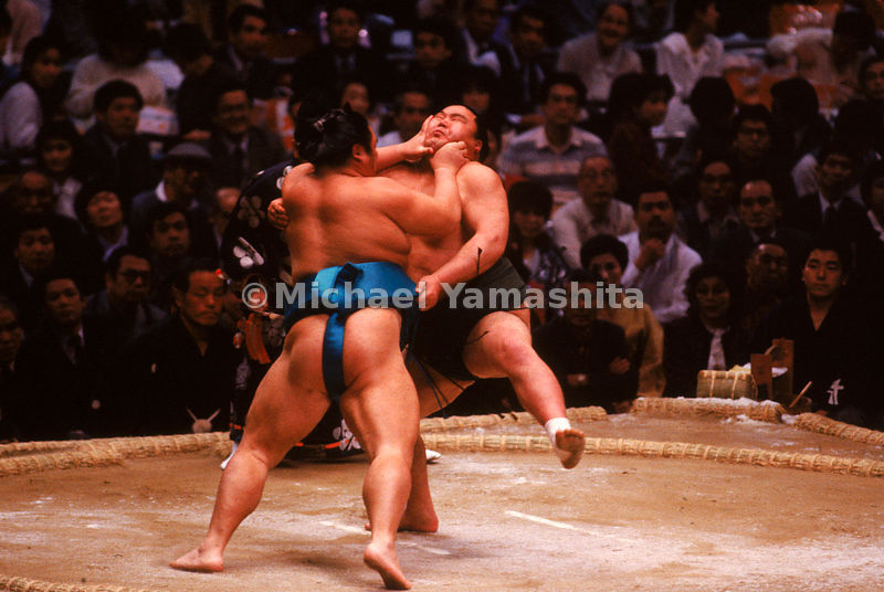 Sumo Wrestlers in Action