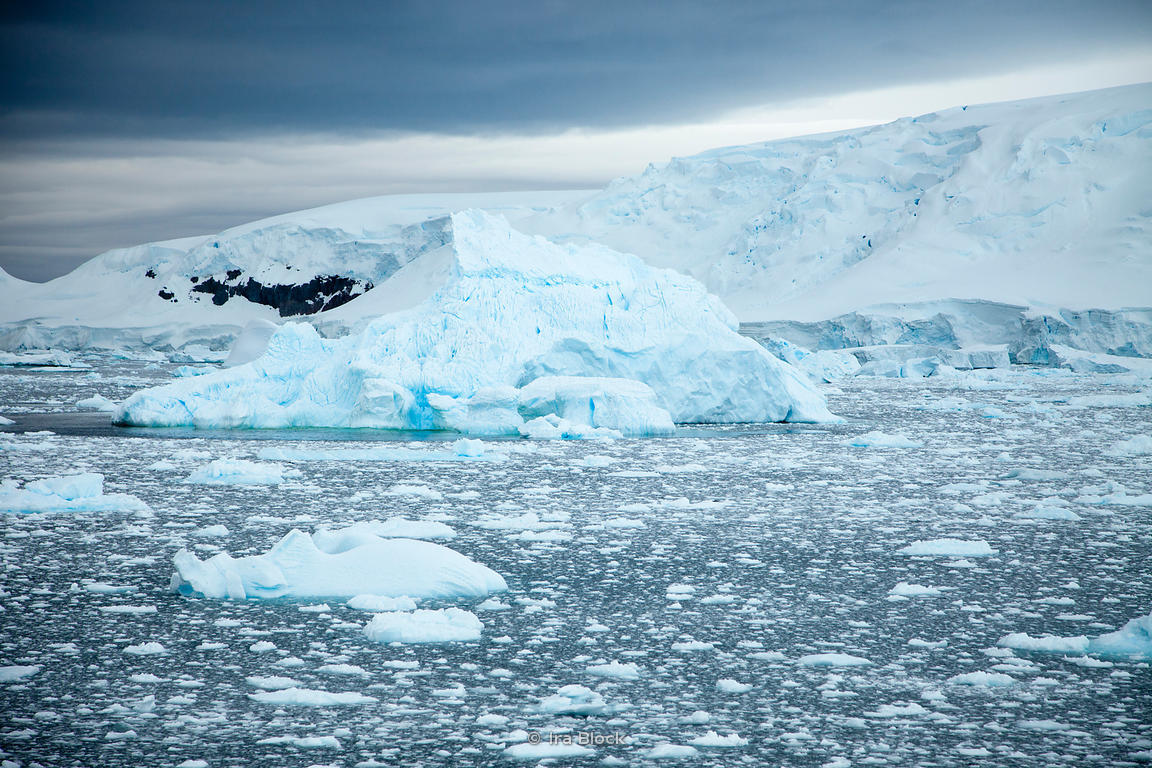Glacier found around the Antarctic Peninsula.