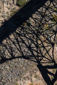 Shadow of the Rio Grande Gorge Bridge