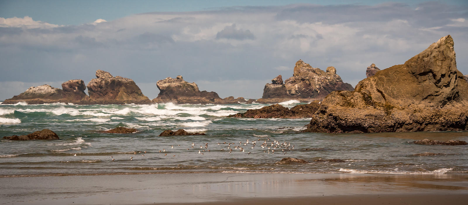 Oregon_Coast-44