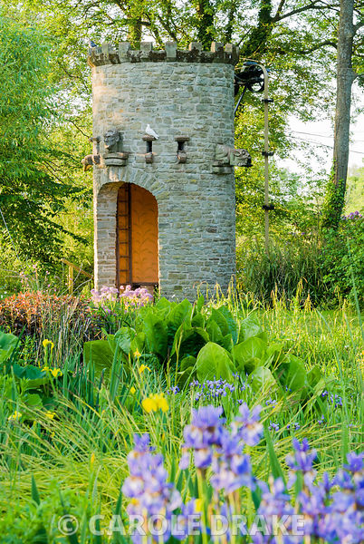 Stone dovecot that operates as a spectacular water feature with Iris sibirica in foreground. A simple belt and trough system scoops water up from the mill leat into a tank which, when full spouts throught the open mouth of a gargoyle back into the mill pond. Westonbury Mill Water Garden, Pembridge, Herefordshire, UK