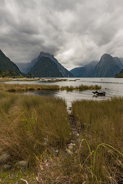 Low cloud in Milford Sound