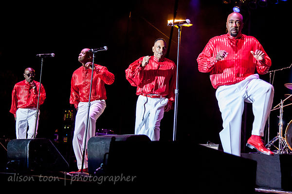 The Trammps photos