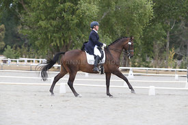 SI_Festival_of_Dressage_310115_Level_8_MFS_1105