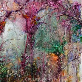 Qualia_s_Meadow_R_signed