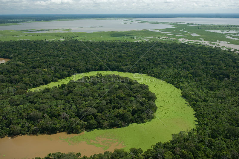 Aerial view of an oxbow lake of Grande / Guapay River and lake, near the border with the Beni Department, in Santa Cruz Department, Eastern Bolivia.