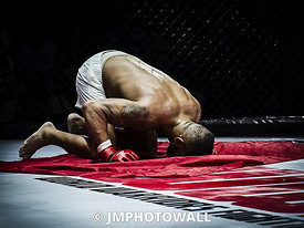 19092015CageEncounter4_DSC2872