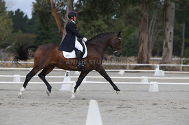 SI_Festival_of_Dressage_300115_Level_9_SICF_0480