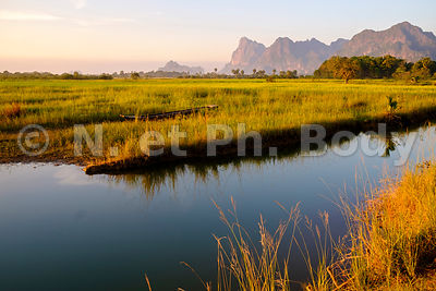 rice-field in karstic landscape , Hpa An, Kayin state, Myanmar