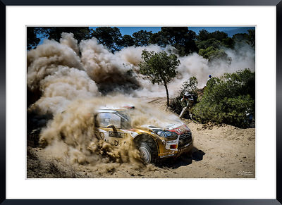 World Rally photos