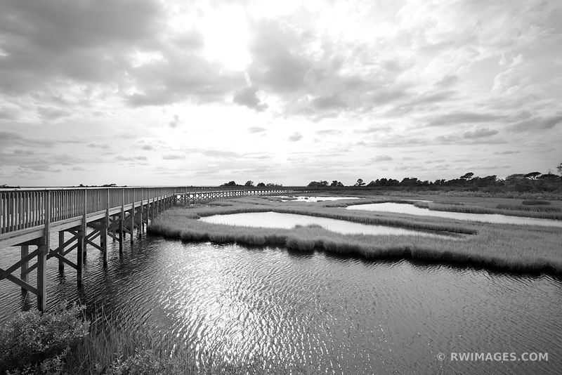 Assateague National Seashore Maryland - Black and White Photos Stock Photos Canvas Framed Fine Art Prints