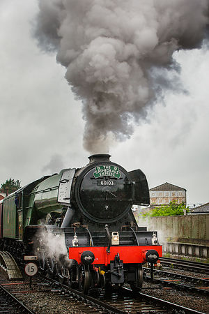 Flying_Scotsman-633a