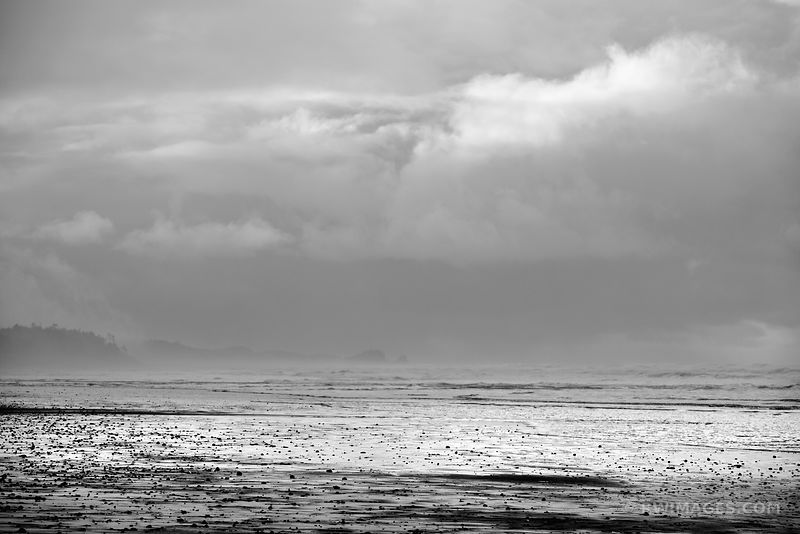 BEACH OCEAN OLYMPIC NATIONAL PARK WASHINGTON PACIFIC NORTHWEST BLACK AND WHITE