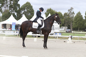 SI_Festival_of_Dressage_310115_Level_6_7_MFS_0655