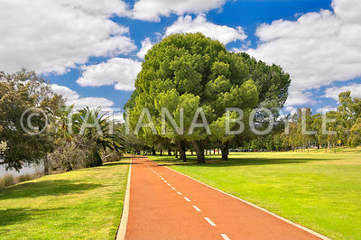 Fitness trail in Burswood Park