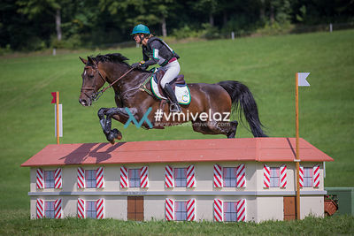 [Equissima] CIC2*: Cross | 03.09.2017 photos