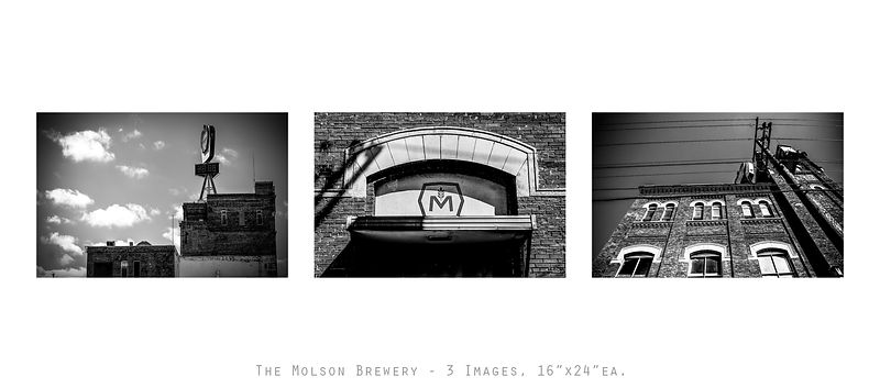 TheMolsonBrewery