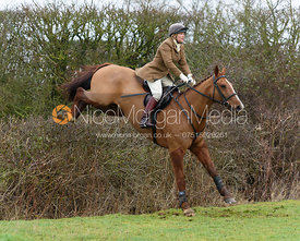 jumping the hedge next to Puss's Bushes - The Cottesmore at Bleak House 17/1