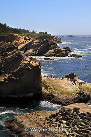 Shore Acres State Park, near Coos Bay