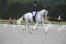 SI_Festival_of_Dressage_300115_Level_4_JLT_0118