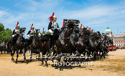 Trooping_the_Colour_8919