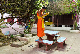 A monk gets ready at a temple in Luangprabang, Laos.