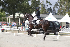 SI_Festival_of_Dressage_310115_Level_6_7_MFS_0626