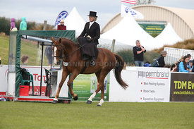 Canty_A_P_131114_Side_Saddle_1217