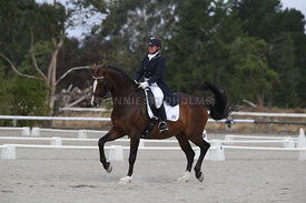 SI_Festival_of_Dressage_300115_Level_9_SICF_0487