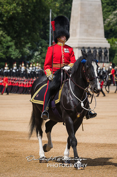 Trooping_the_Colour_8762