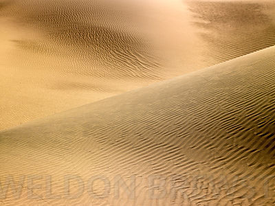Death_Valley_May2010_192