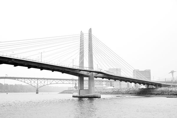TILIKUM CROSSING BRIDGE PORTLAND OREGON BLACK AND WHITE