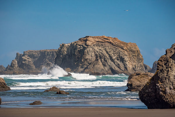 Oregon_Coast-26