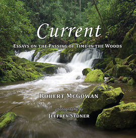 Current, Essays on the Passing of Time in the Woods