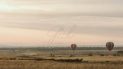 Sunrise Balloons Over Masai Mara During Migration