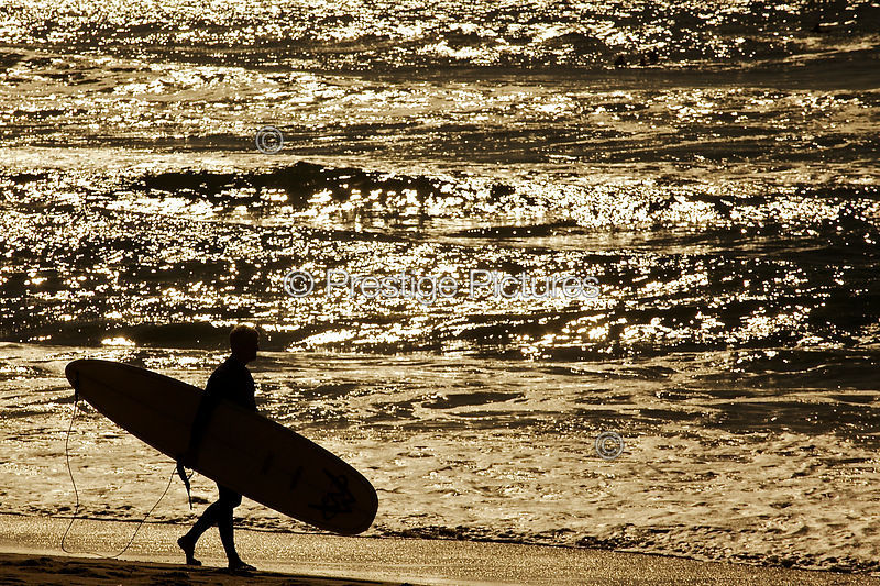 Surfer Walks Along Manly Beach