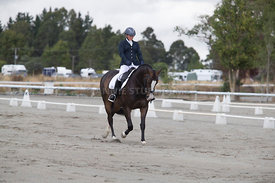 SI_Festival_of_Dressage_300115_Level_3_NCF_0087