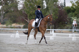 SI_Festival_of_Dressage_300115_Level_3_NCF_0084