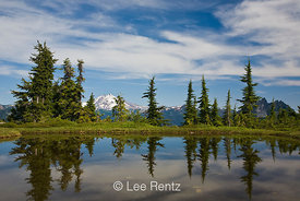 Glacier Peak viewed from a tarn in Mt. Forgotten Meadows, Mt. Baker-Snoqualmie National Forest, Cascade Mountains, Washington, USA, August, 2008_WA_4584