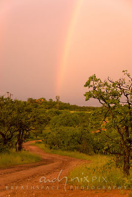 A rainbow ending at a windmill, with a winding dirt track leading up to them