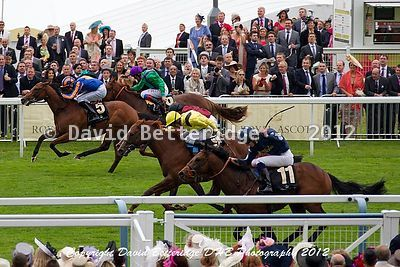 royal_ascot_DHB_0234