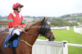 11th October 2013 Handicap Steeplechase with winner Orange Nassau