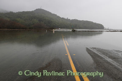 Marin County road during King Tide