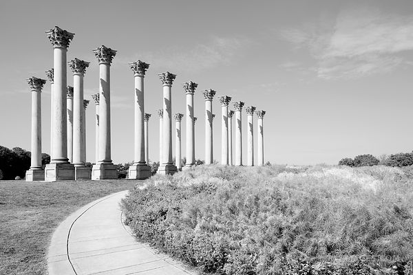 NATIONAL ARBORETUM CAPITOL COLUMNS WASHINGTON DC BLACK AND WHITE