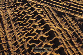 Tire tracks on sand, Page, Arizona, USA